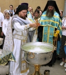 Коневская 2006